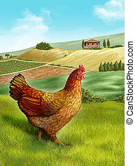 Hen and farm - Hen in a beautiful rural landscape. Digital...