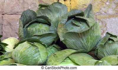 Fresh green Cabbage - Fresh set of green Cabbage.