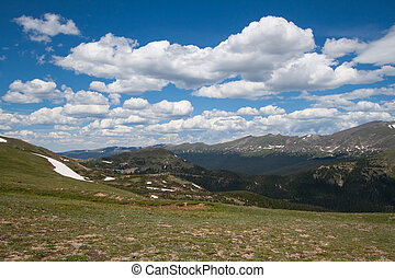 Alpine meadow in Rocky Mountains, Colorado