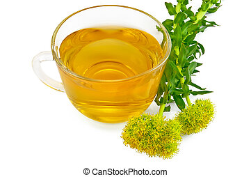 Herbal tea with flowers Rhodiola rosea - Healing herbal tea...