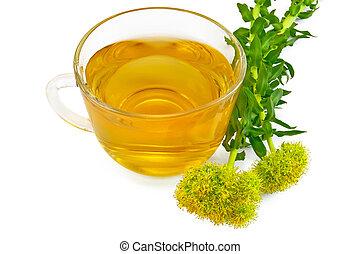 Herbal tea with flowers Rhodiola rosea - Healing herbal tea...