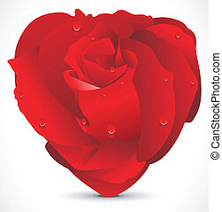 abstract red shiny rose heart vector illustration