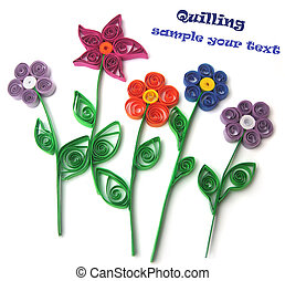 Quilling flowers on a white background...