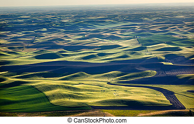 Yellow Green Wheat Fields Black Dirt Fallow Land from Steptoe Butte at Palouse Washington State Pacific Northwest.  Steptoe Butte is the highest spot in the Palouse, Washington.