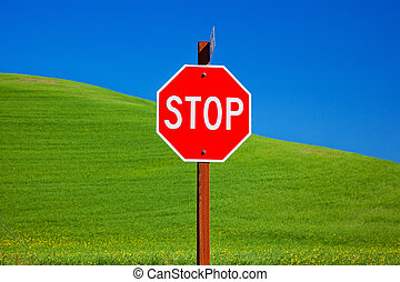 Red Stop Sign Green Wheat Grass Fields Blue Skies Abstract Palouse Washington State Pacific Northwest