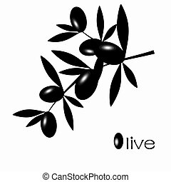 Black Olive - Black olive branch isolated on white...