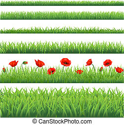 Green Grass Set With Red Poppy, Isolated On White...