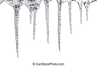 icicles. Isolated with clipping path - icicles which are...