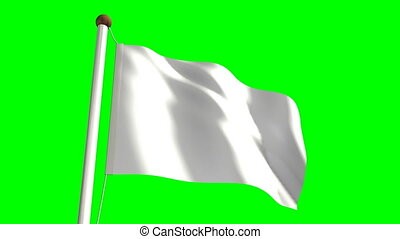 White flag (with green screen)