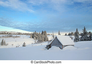 Snow covered rural outbuilding - Snow buried outbuilding in...