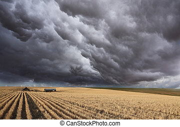 The thundercloud on Montana - Huge thundercloud on fields of...