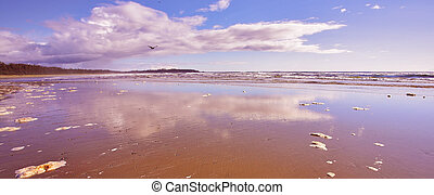 Coast ocean during outflow - Coast Pacific ocean during...
