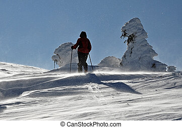Back-country skier - Back country skier (ski touring),...