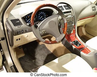 Interior of a sporty luxury convert