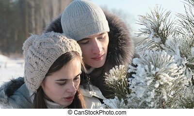 Couple near fir-tree - Young couple playfully blowing snow...