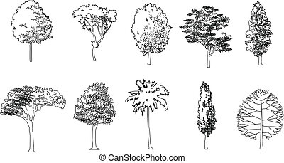 Graphic tree, Vector illustration