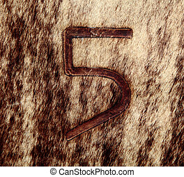 Number Five Thermal Stamp on Young Cow Skin - Numeric Number...