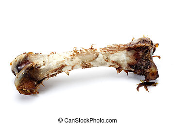 Eaten bone. - A bone of a turkey leg on a white background...