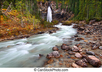Laughing Falls - Yoho National Park