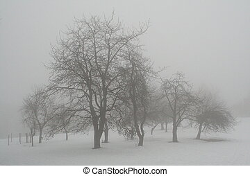 clump of trees in the mist
