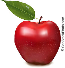 Fresh red apple with green leaf Vector illustration