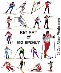 Big set of Ski sport colored silhouettes Vector illustration...