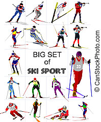 Big set of Ski sport colored silhouettes. Vector...