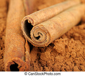 cocoa and cinnamon isolated on white background