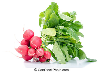 bunch radish isolates before white background