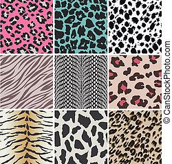 textures, vecteur,  animal, peau