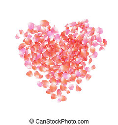 petals heart - Heart of rose petals isolated on a white...