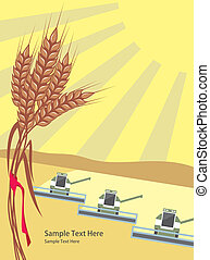 Harvesting - row of harvesters threshing wheat, vector