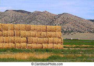 Hay bales in Rural Idaho - Large hay bales in rural Idaho on...