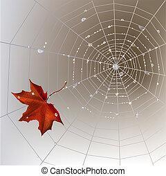 Spider web autumn background