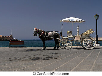 Horse cab - Hiring a horse cab for tourist who visit