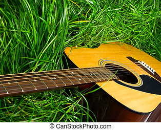 acoustique, guitare, vert, herbe