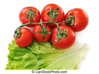 Tomato isolated with lettuce