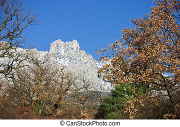 Ai-Petri mountain - The Ai-Petri mountain at winter. Crimea....