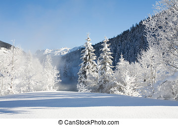 winter and snow in the mountains - beautiful image of a cold...