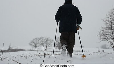 nordic walking - fitness training for nordic walking in the...