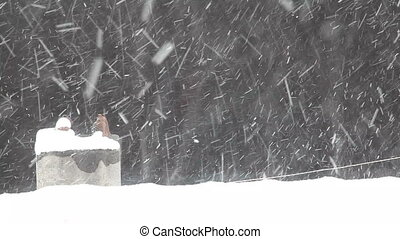 Snow Fall 4 HD 1080p - snow fall on the roof, Shoot Canon 5D...