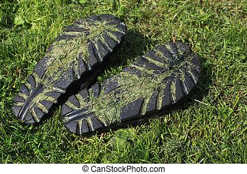 pair of slippers on the green grass