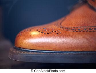elegante, macho, zapato