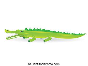 cartoon green crocodile.