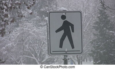 Pedestrian sign in a snowstorm. - A sign warns to look out...