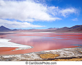 Red Lagoon, Laguna Colorada - The Red Lagoon, or Laguna...