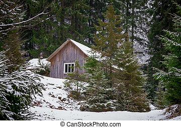 maison, forêt, hiver
