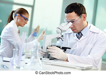 Scientific research - Two scientists conducting research in...