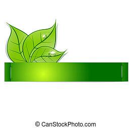 papel, faixa, verde, folhas, gotas, orvalho, branca, backg