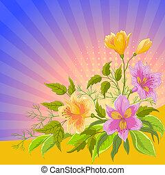 Flower background radiant, alstroemeria